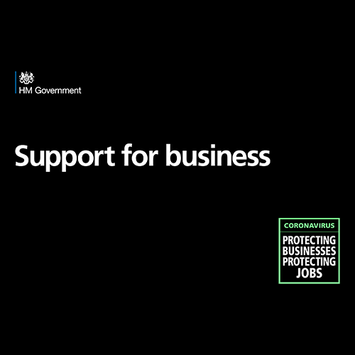 UK Government Business Support Logo